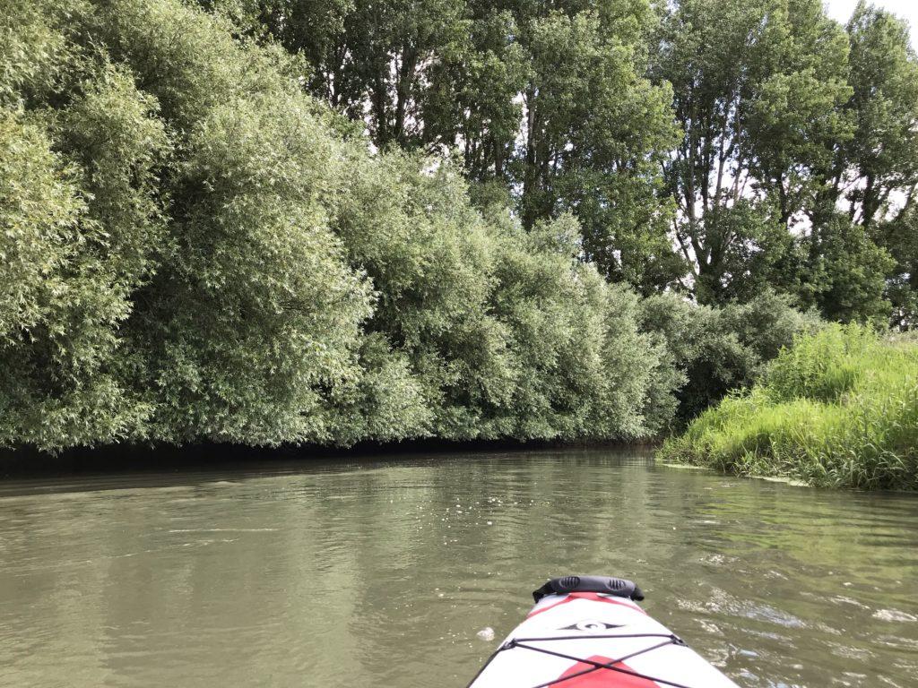 kayak Authie