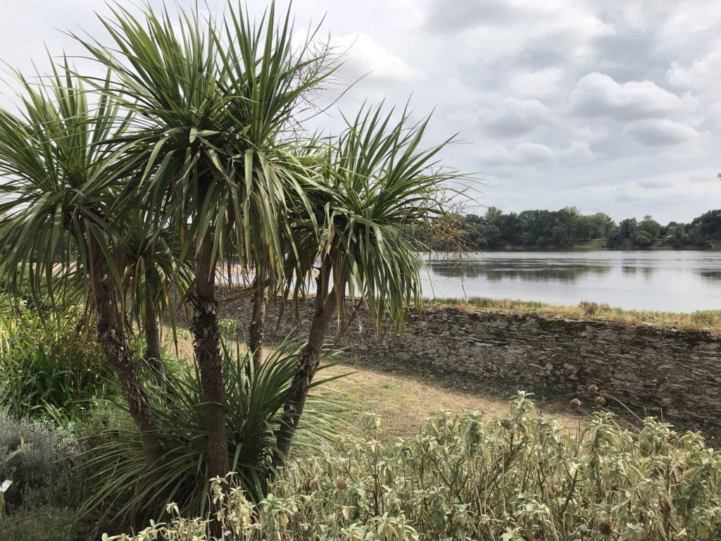 Jardin méditerranéen Loire port Thibault