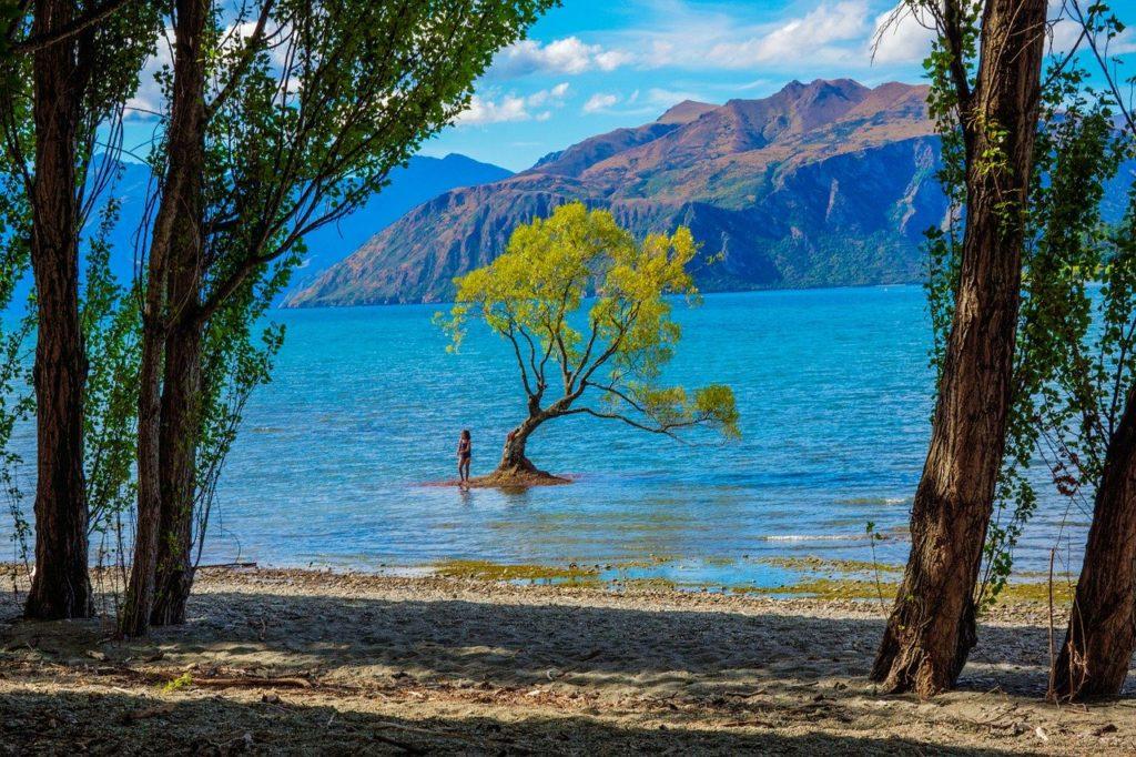 new zealand, wanaka, lake wanaka
